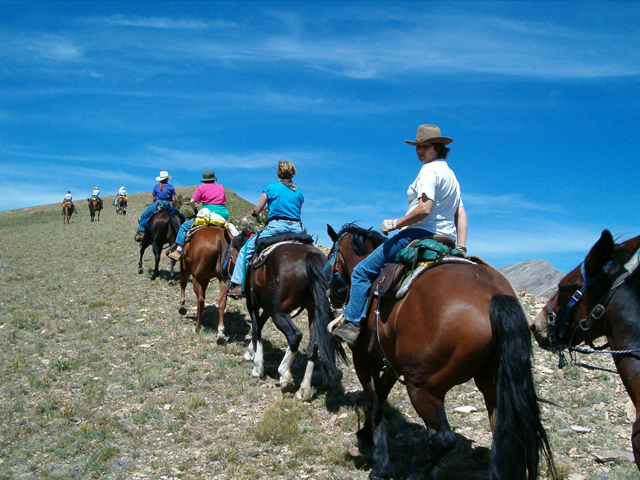 Guided horseback riding trip in Montana